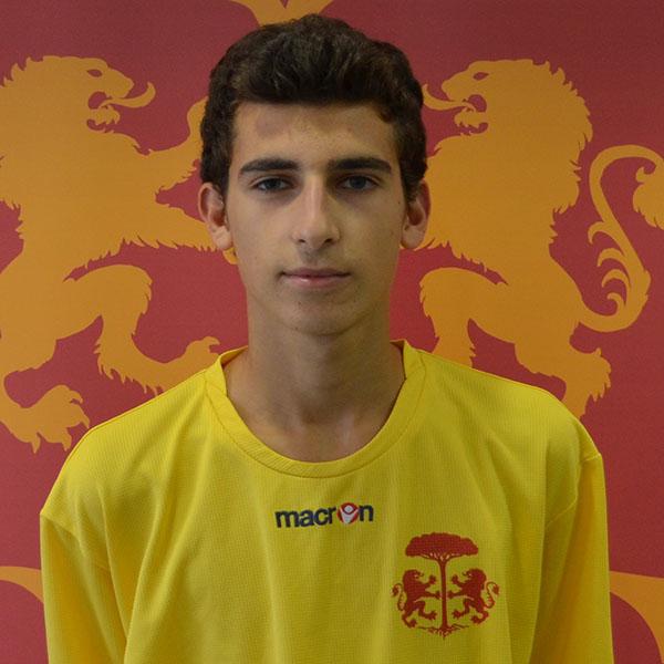 Nicola Arrigoni